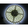 LED LIGHT 5 METRE  ROLL FLEXIBLE: 13 WATTS PER METRE.  65 WATTS PER ROLL